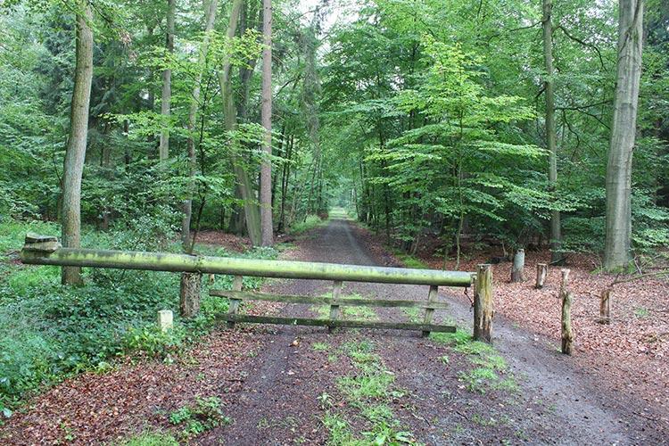 """Informationsveranstaltung zum FFH-Gebiet """"Pottebruch und Umgebung"""" organisiert durch die Untere Naturschutzbehörde"""