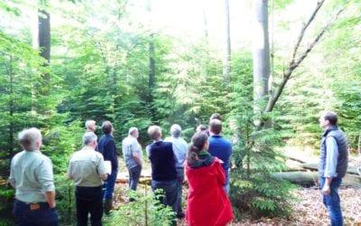 Gebietsmanager und Naturschutzbehörde erörtern bei Ortstermin im Gehn