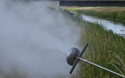Ergebnis der Heißwasser+Dampf-Methode gegen invasive Neophyten